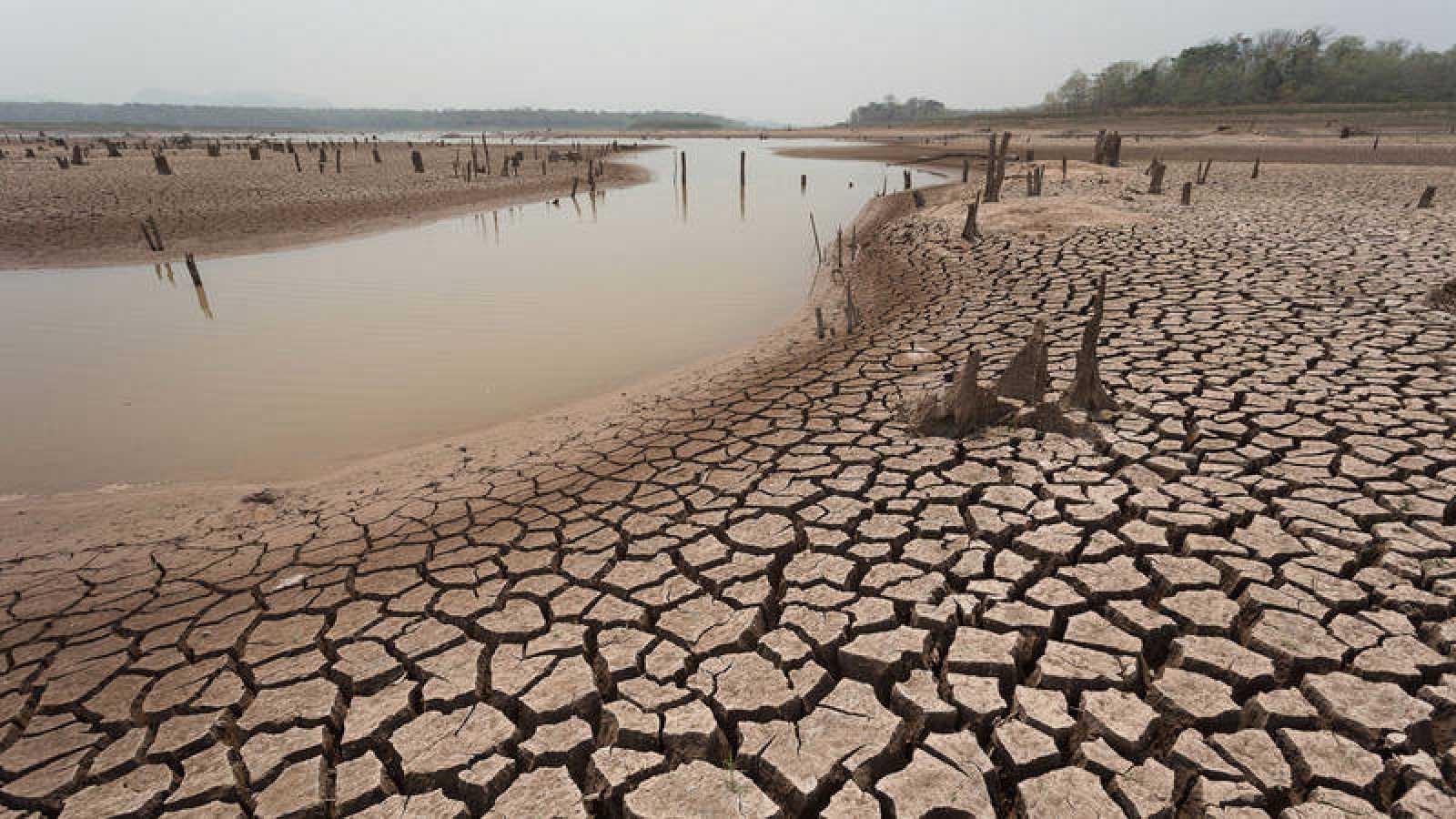 Científicos calculan que la Tierra se calentará 4ºC al final de este siglo
