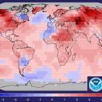 11 meses seguidos batiendo récords de calor