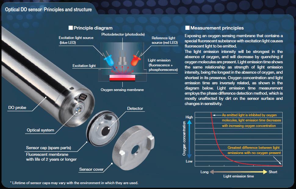 Principio y estructura del sensor óptico de oxígeno disuelto. Horiba HD-200