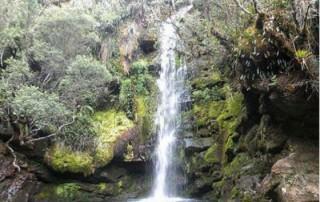 El río Bogotá alcanza una longitud de 380 kilómetros y nace en el Páramo de Guacheneque. /Foto: Secretaría Distrital de Hábitat