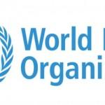La OMS lanza una herramienta para cuantificar el impacto de la contaminación en la salud