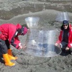 Científicos de Vigo y Santiago inician una campaña en la Antártida para estudiar el cambio climático en algas