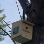 La Diputación de Málaga instala sensores para medir la calidad del aire en espacios naturales