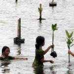 El IPCC selecciona a 5 científicos españoles para sus informes especiales