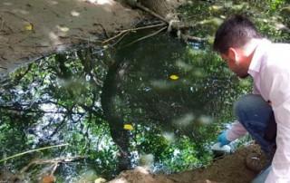 Fiscalía busca en Valledupar a culpables por contaminación del río Cesar