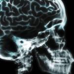 Reducir la polución ambiental frenaría el aumento de casos de enfermedades cerebrovasculares y neurodegenerativas