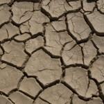 """Guterres (ONU) asegura que el cambio climático será """"desastroso"""" para África"""