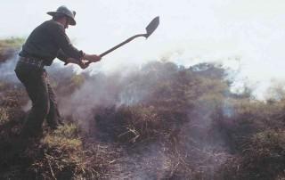 Bogotá respira los incendios de la Orinoquia