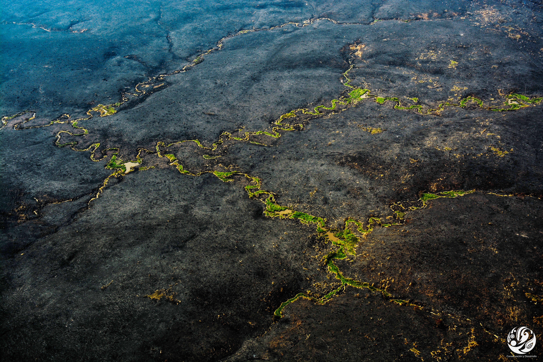 Las masas de aire contaminadas de los incendios de la Orinoquia pueden llegar a la superficie e impactar las concentraciones a nivel del suelo, afectando así la calidad del aire. Foto: FCDS