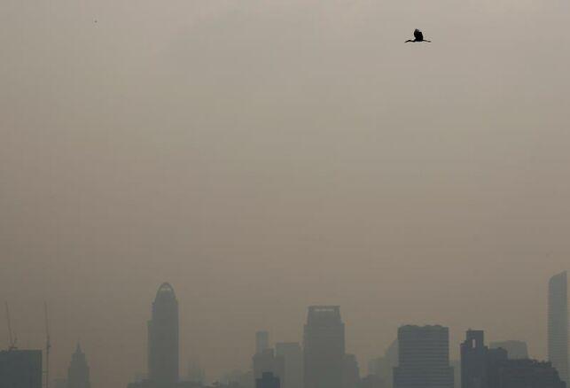 Un estudio dobla el número de muertes anuales relacionadas con la contaminación del aire: 800.000 en toda Europa